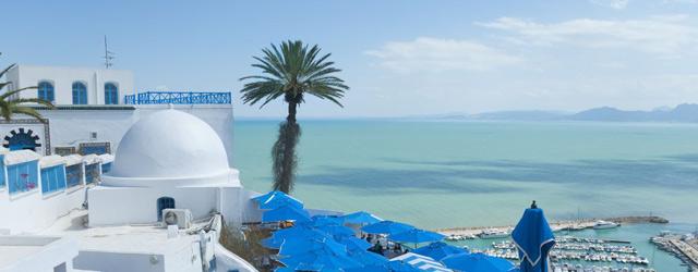 Vue de Tunis, belle maison blanche, un palmier et la mer